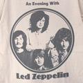 (L) レッドツェッペリン Evening Tシャツ(新品)