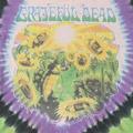 グレイトルデッド sunflower terrapinTシャツ(古着)
